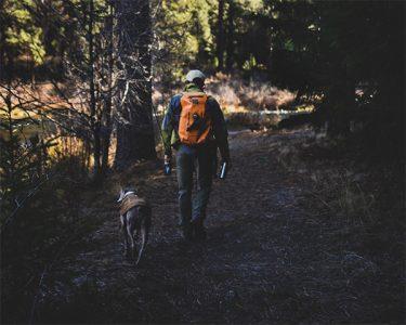 Fishing Josh and Koda dog walking