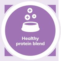 Cat Protein Blend