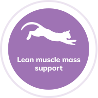 Cat Muscle Mass